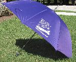 Children's Defense Fund Umbrella