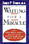 Click here for more information about Waiting for a Miracle: Why Schools Can't Solve Our Problems -- and How We Can
